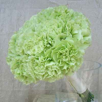 Green carnation wedding bouquet