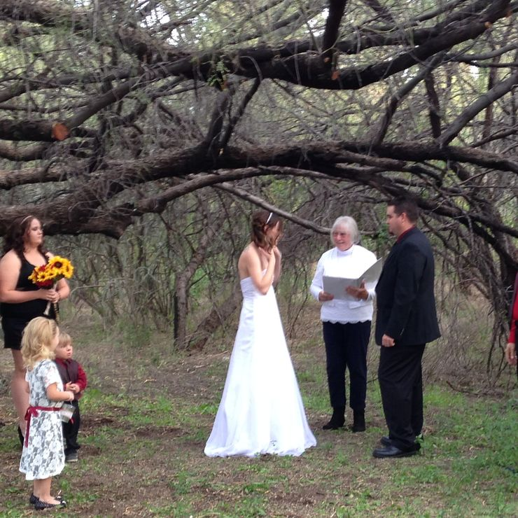 Under the Tree Wedding!