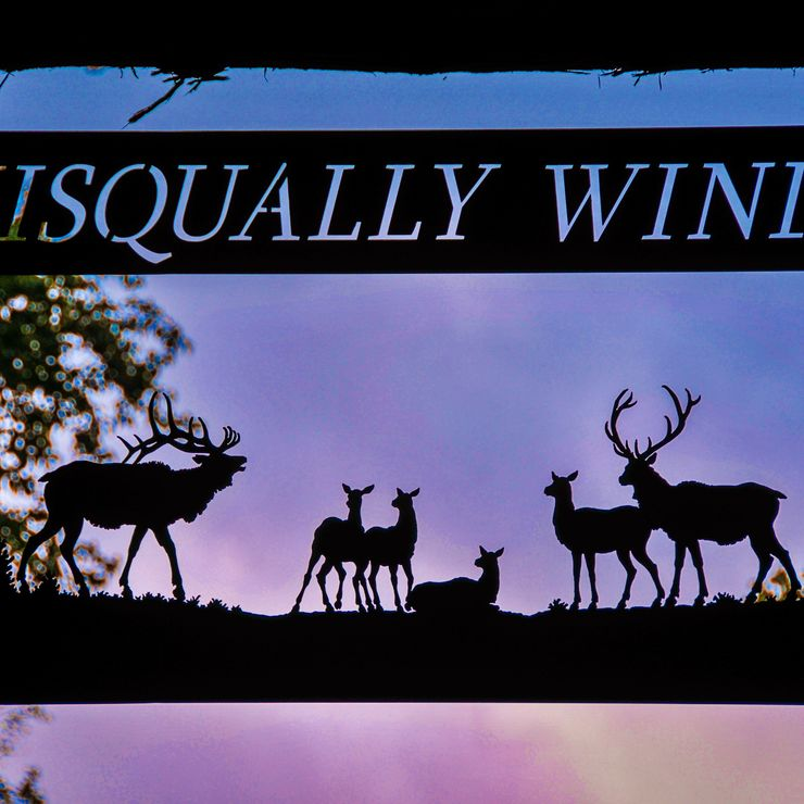 Nisqually WInds