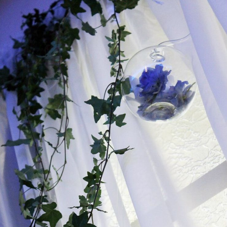 "Wedding ""Flight of seagull"""