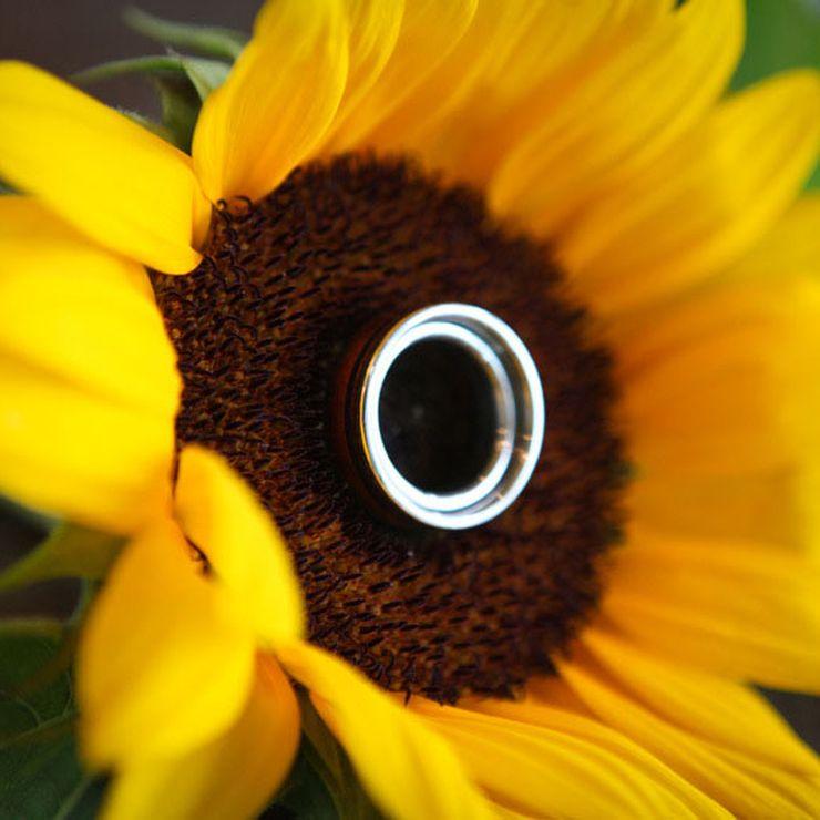 Koa and Lapis Titanium Ring Set
