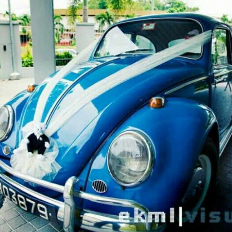 Beetles and Kombis in various colours available