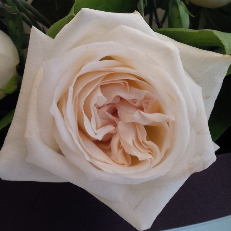 special roses for special weddings